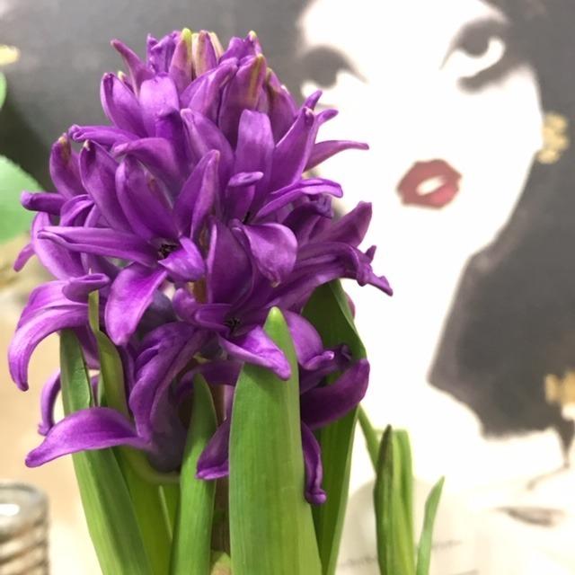 春を感じるお花・・・♪