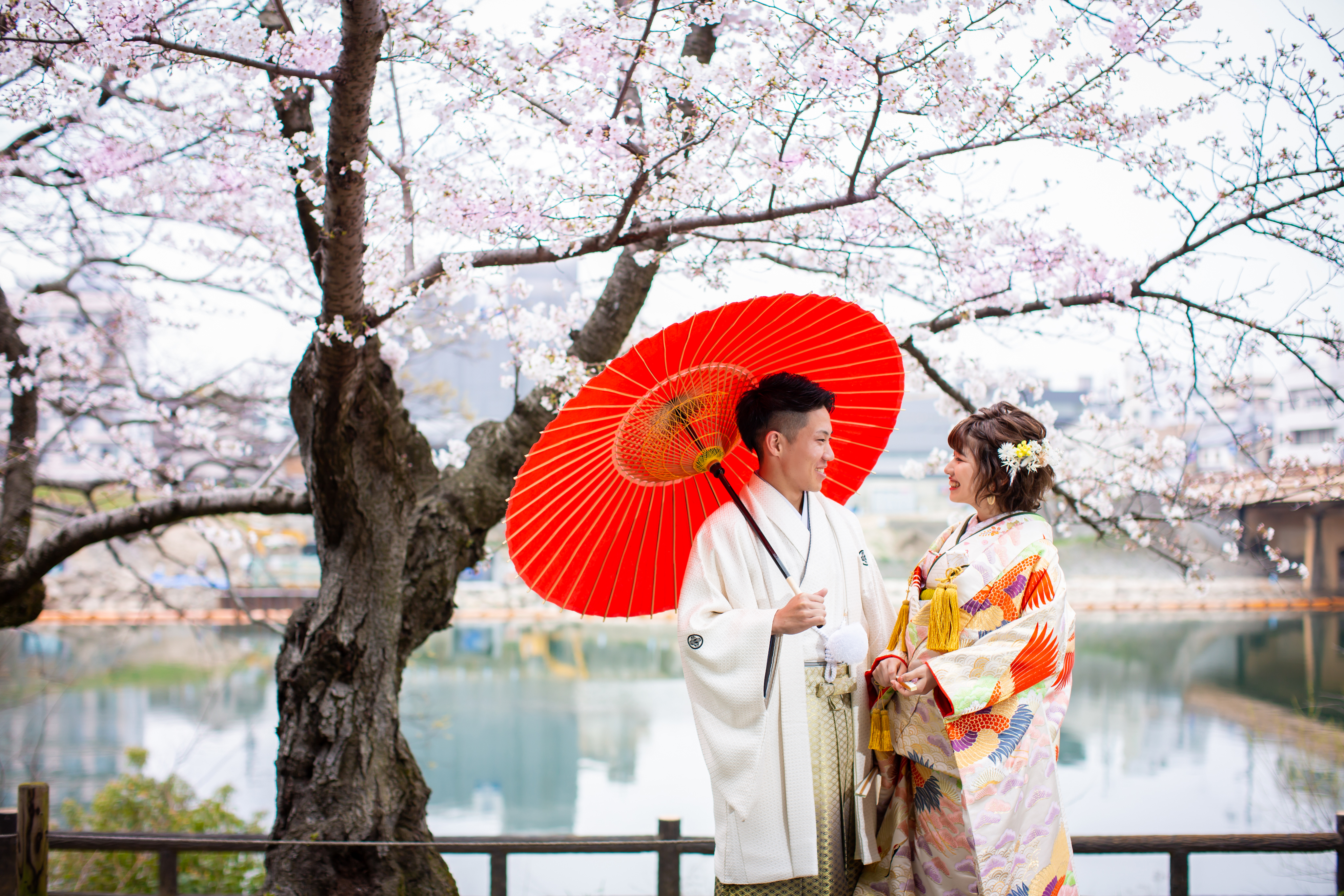 日本の伝統「美」