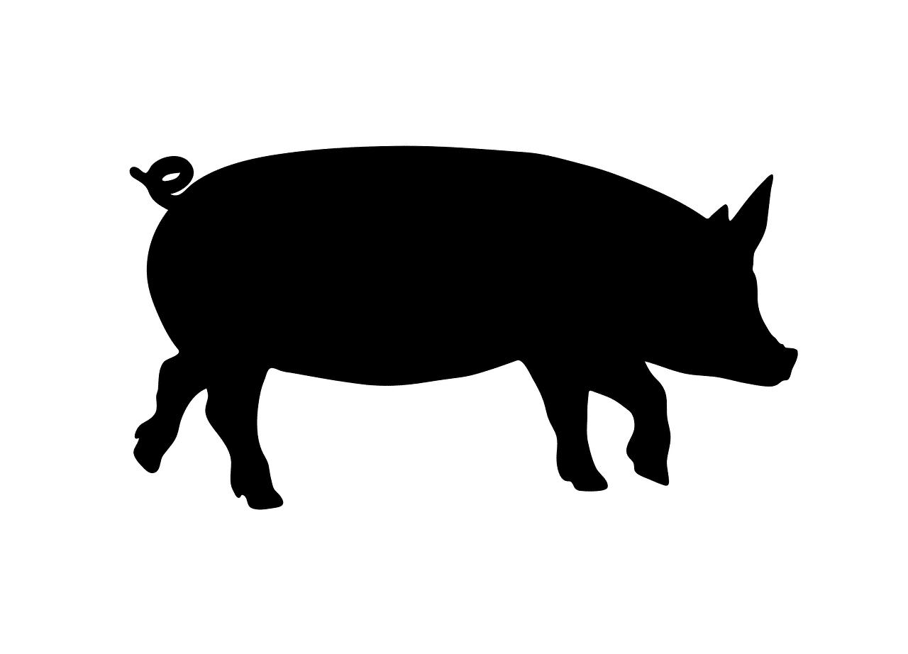 豚の国「岡山」!